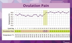 Ovulation Pain - Symptoms